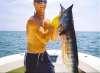 WAHOO fish