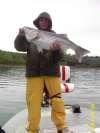 18# Striper fish