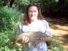 "22"" carp fish"