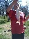 alvarado lake blue catfish