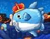 King Mola fish