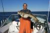 20# Cod fish