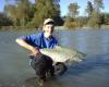 nice spring salmon. fish